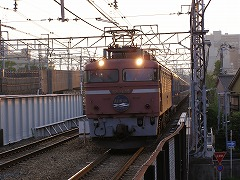 P8011475.jpg
