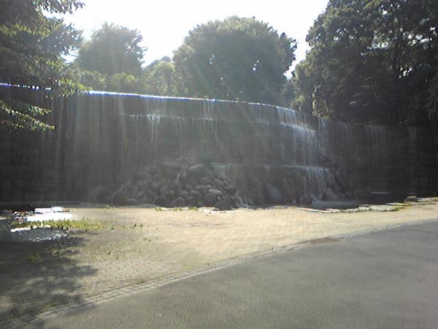 都庁付近の公園