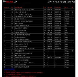 R03_GT300-2.jpg