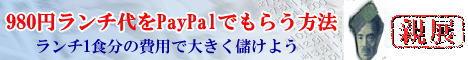 【980円ペイパル】