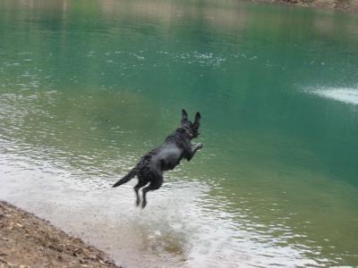 飛ぶのよ!