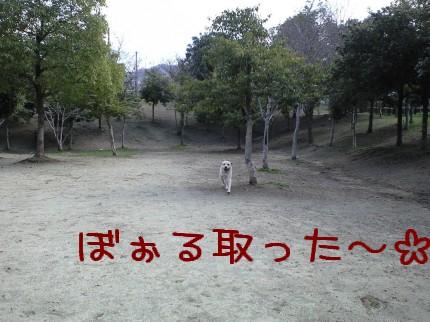 CA390061.jpg