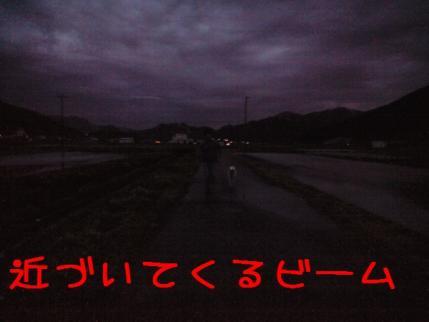CA390808.jpg