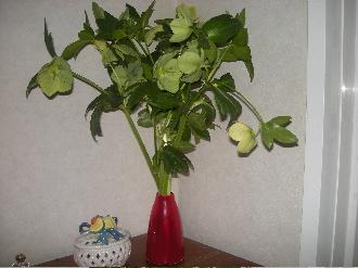 クリロー花瓶
