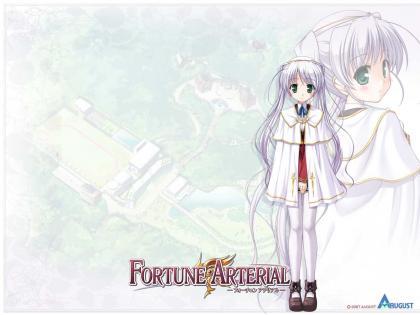 FORTUNE ARTERIAL007
