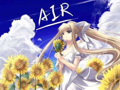 AIR011.jpg
