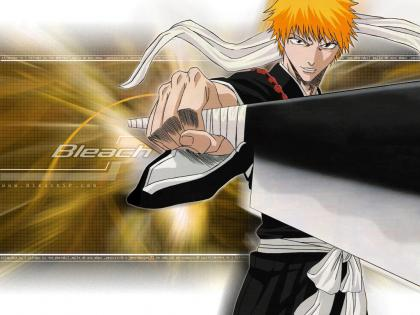 BLEACH002.jpg