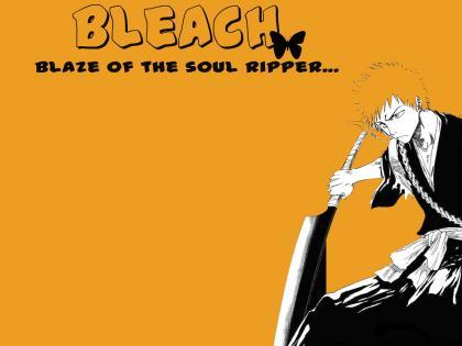BLEACH026.jpg