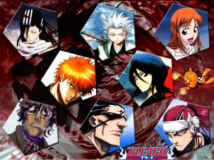 BLEACH030.jpg