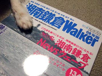 湘南鎌倉Waiker