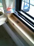 窓枠の取り付け完了005