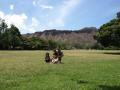 ryo-hawaii4.jpg