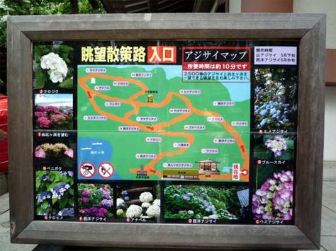 長谷寺散策案内図