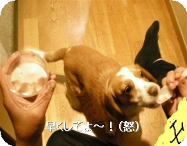 加工済_DSCN0360_edited (Small)