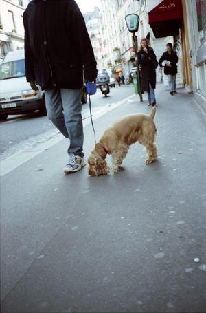 パリ写真29
