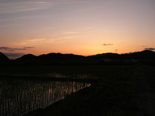 夕日の時間