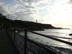 朝の散歩 3