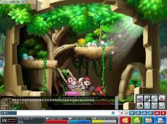 Maple0026a.jpg
