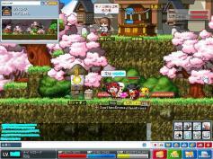 Maple0034a.jpg