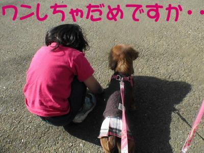 2_20080322213518.jpg