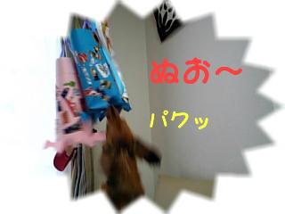 DVC00021_M2.jpg