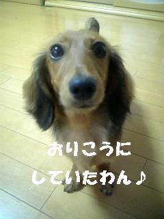 DVC000542.jpg