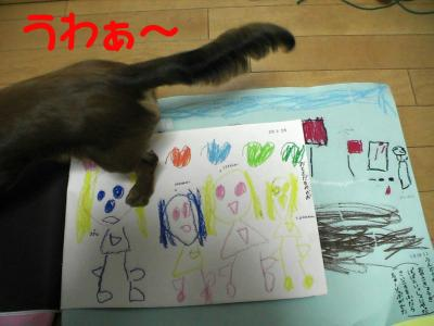 PIC_0972.jpg