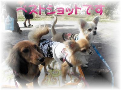 PIC_11712.jpg