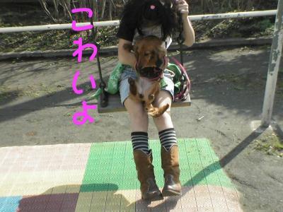 PIC_12452.jpg