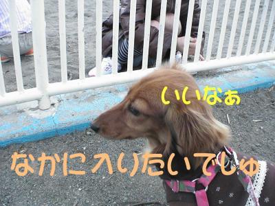 PIC_12762.jpg