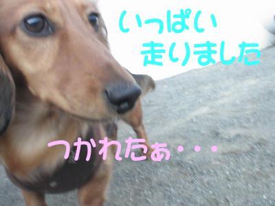 PIC_12802.jpg