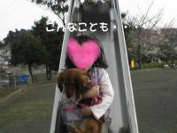 PIC_12912.jpg