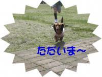 PIC_13642.jpg