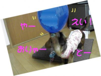 PIC_1392.jpg