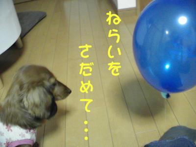 PIC_1395.jpg