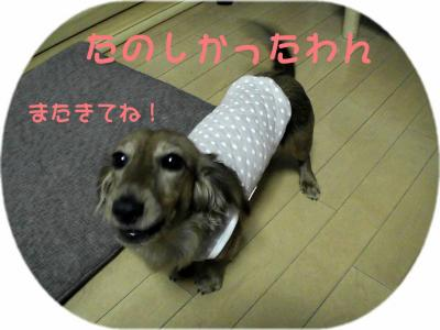 PIC_14122.jpg