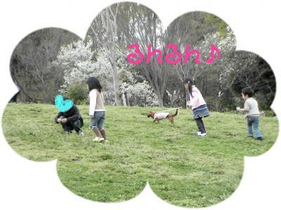 PIC_1454.jpg
