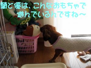 PIC_6068.jpg