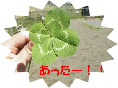 PIC_6091.jpg
