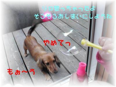 PIC_62212.jpg