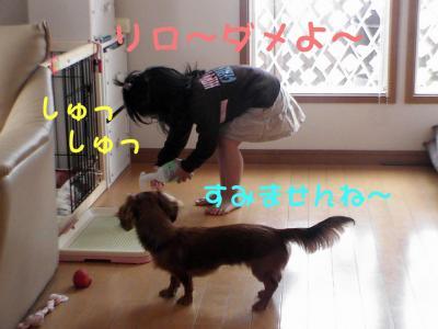 PIC_62272_20080429205246.jpg