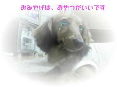 PIC_623822.jpg