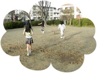 PIC_62562.jpg