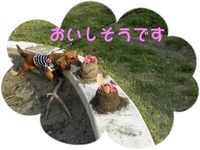 PIC_62642.jpg