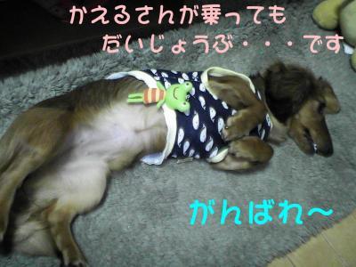 PIC_62802.jpg