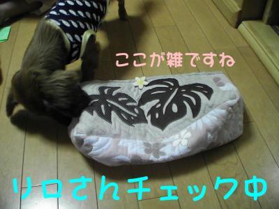 PIC_62852.jpg