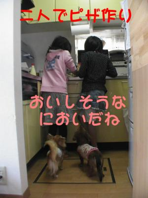 PIC_63032.jpg