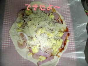 PIC_63042_20080419190153.jpg