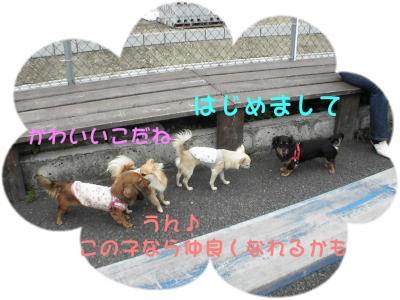 PIC_63112.jpg