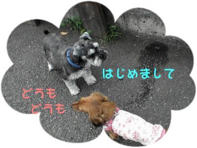 PIC_63192.jpg